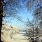 Dromoland in Winter.jpg