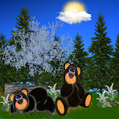 Baby Black Bears GO THEME
