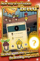Screenshot of Mushroom Garden Deluxe