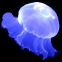 Jellyfish Sticker icon