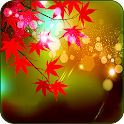 Maple Leaves Live Wallpaper icon
