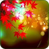 Maple Leaves Live Wallpaper