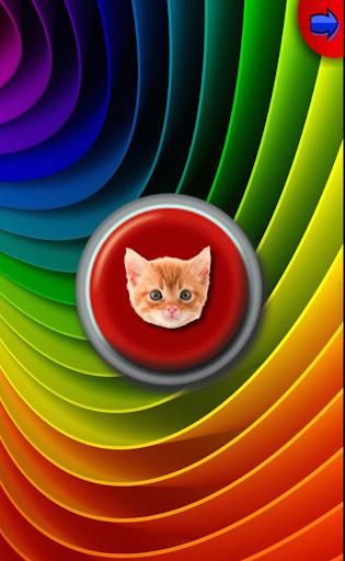 Cat Button Push the Cat Button