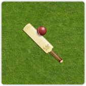 Gully Cricket Scorer Pro