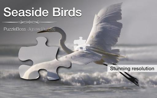 Seaside Bird Jigsaw Puzzles
