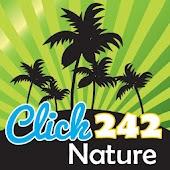 Click242: Nature