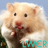 live hamster wallpapers