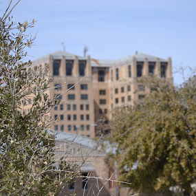 Hamilton Building, Wichita Falls, TX by Cal Johnson - Buildings & Architecture Office Buildings & Hotels ( building, old, texas, architecture, historical )