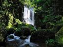 桑ノ木の滝