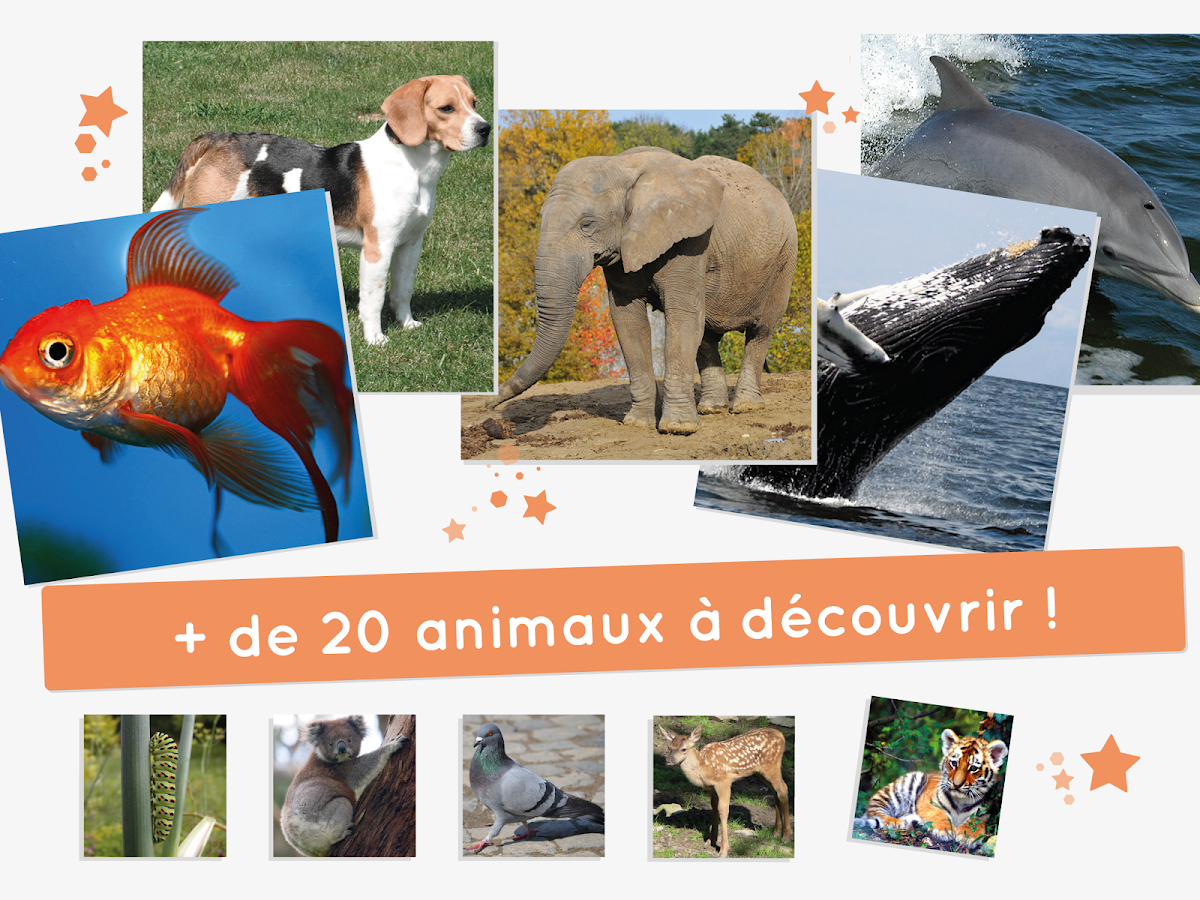 Puzzle-Animaux -Apprendre le puzzle -- AMIKEO APPS- screenshot