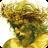 Jesus Hates Zombies 1.4