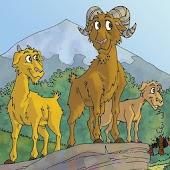 Os três carneirinhos