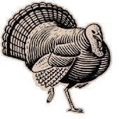 TackleBox Turkey Call Free