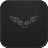 Wings Go Launcher theme