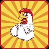 Hunter Chicken Eggs