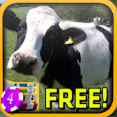 3D Cow Slots - Free