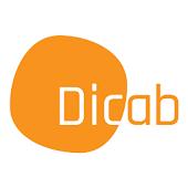 다국어 사전 단어장 Dicab - 디캡