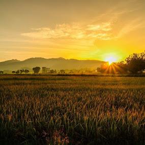 Alhamdulillah...mentari muncul lg dan aku masih diberi nafas utk hari ini...terima kasih ya allah... by Chairelgibrant Othman - Landscapes Sunsets & Sunrises