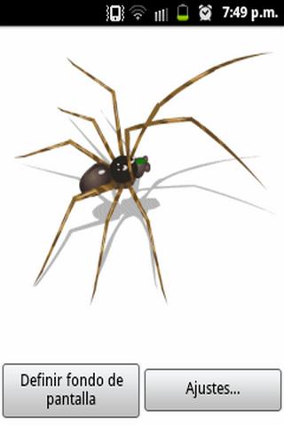 Spider LW