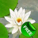 3D Lotus Live Wallpaper Free logo