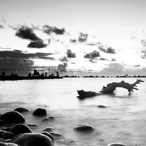 Like a stones by Irfan Langgolong - Black & White Landscapes
