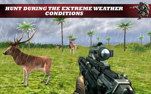 【免費動作App】叢林狩獵:狙擊手射擊-APP點子