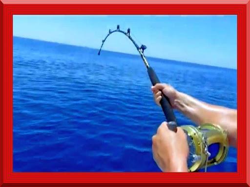 魚の釣り!