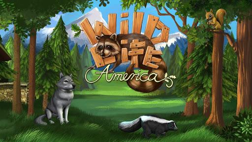 WildLife - America