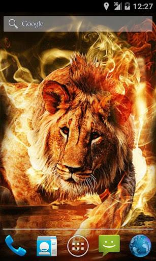 Fire Lion Live Wallpaper