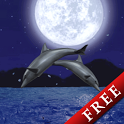 Dolphin Night Trial icon