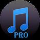 Easy MP3 Downloader Pro