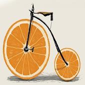 (자전거 속도계) 감성 자전거