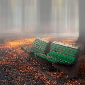by Dragana Trajkovic - City,  Street & Park  City Parks ( park, bench, serbia, belgrade, zemun, object, furniture, public )