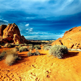 by Perry Churchill - Landscapes Deserts