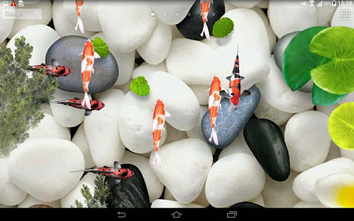 Koi Fish Live Wallpaper 3D Apps On Google Play