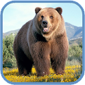 Grizzly HD. Live Wallpaper icon