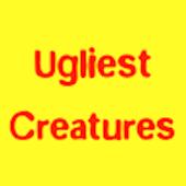 Ugliest Creatures