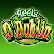Reels O Dublin HD Slot Machine icon
