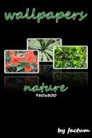 Screenshot of wallpapers-nature 960x800