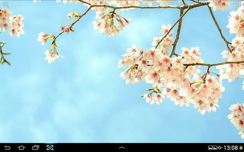 玩免費個人化APP|下載春天動態桌布 app不用錢|硬是要APP