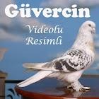 Güvercin icon