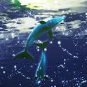 Dolphin RYUKYU Techno Free logo