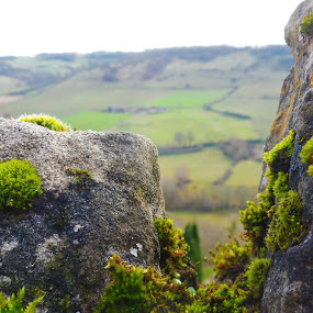 Cordes sur Ciel by Alexandra Rafaila - Nature Up Close Rock & Stone ( hill, macro, nature, moss, france, landscape, rocks,  )