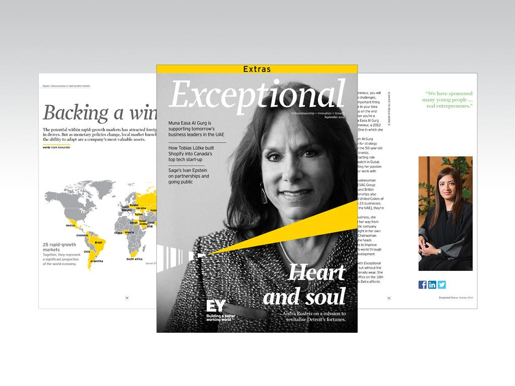 EY Exceptional - screenshot