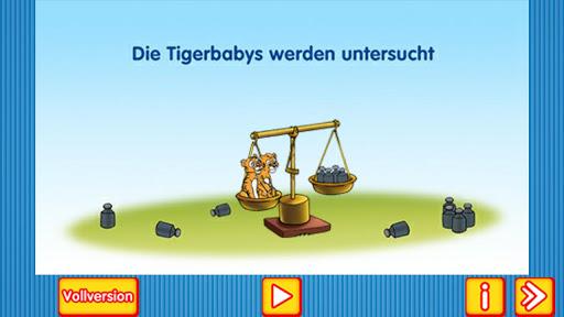 Tigerbabys werden untersucht