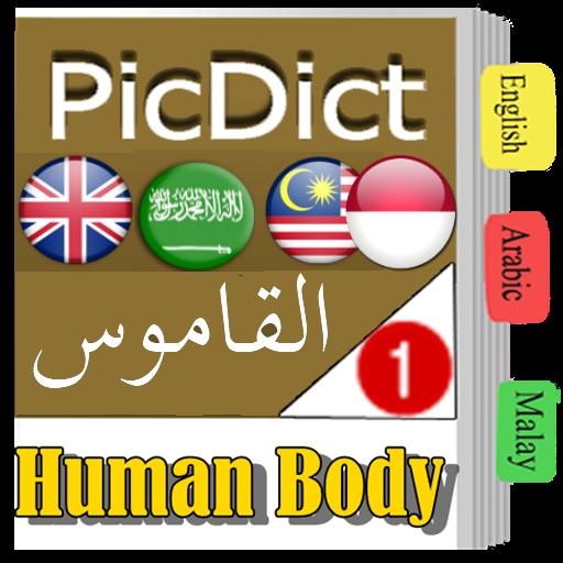 碧涛词典(英语 - 阿拉伯语) 教育 App LOGO-硬是要APP