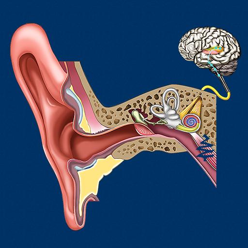 Ear ID 教育 App LOGO-APP試玩
