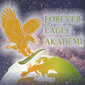 Eagle Akademi Asistan