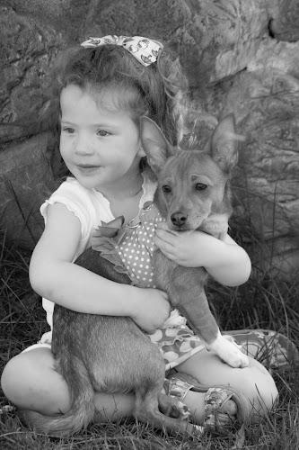Little Girl and Her Puppy by Scott Morgan - Babies & Children Children Candids ( little girl, b&w, black and white, pet, dog, kid,  )
