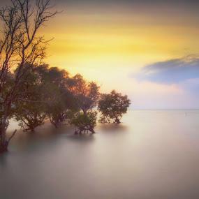 by Kuwadzer Kuhamid - Landscapes Sunsets & Sunrises